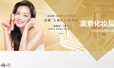 美素化妆品品牌互联网SEO与SEM投放策略与整合营销方案
