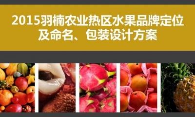农产品羽楠热区水果品牌定位及命名,包装设计推广方案
