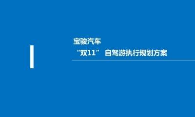汽车品牌宝骏汽车双11自驾游活动执行策划方案