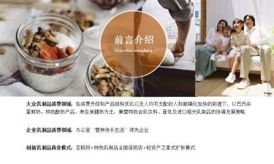 乳制品行业深圳市丰优百餐饮管理有限公司商业计划方案
