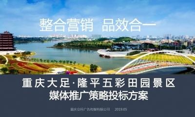 乡村旅游-重庆大足·隆平五彩田园景区媒体推广投标文化旅游营销策划方案