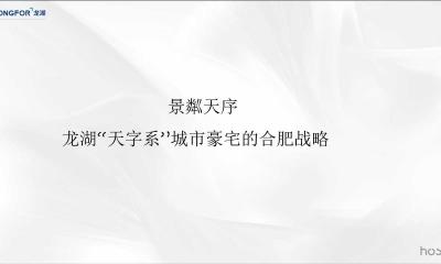 房地产品牌-合肥龙湖天字系豪宅2019年传播策划方案
