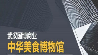 房地产项目-武汉国博商业新媒体营销推广建议策划方案