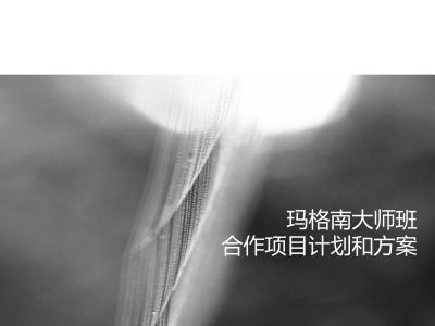 世界知名摄影玛格南大师班-合作项目计划营销策划方案