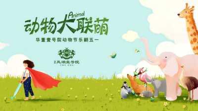 地产项目-华董凤湖壹号动物节大联萌乐翻五一活动策划方案