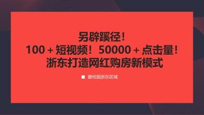房地产品行2020碧桂园【浙东区域】打造网红购房新模式总结策划方案