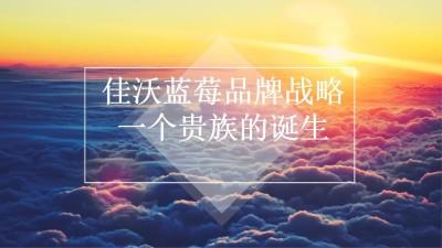 现代农业食品产业鑫荣懋集团-佳沃蓝莓品牌战略传播策划方案