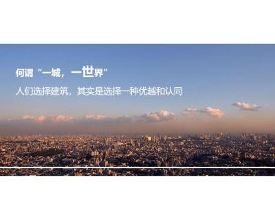 地产品牌-汇星商业中心三维影片策划推广方案