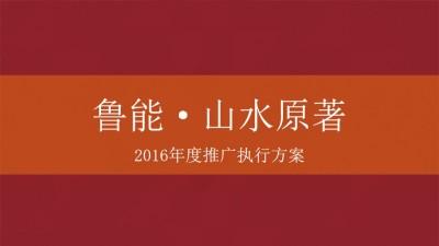 互联网-聚力PPTV电视&奔跑中国招商策划方案