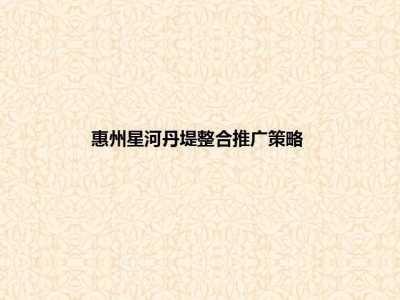 房地产品牌-惠州星河丹堤整合营销策划方案
