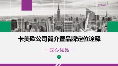 智能手机品牌-卡美欧公司简介暨品牌定位传播策划方案