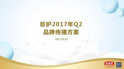 奶粉品牌-伊利金领冠珍护Q2品牌传播推广方案