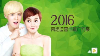 护肤品品牌-叶子年度网络营销策划方案