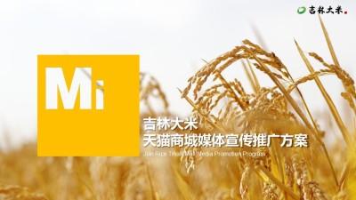 粮食吉林大米天猫商城宣传推广项目策划方案