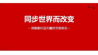 商业地产碧桂园天麓府营销报告策划方案