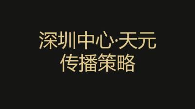 房地产-深圳中心天元整合传播策略推广方案