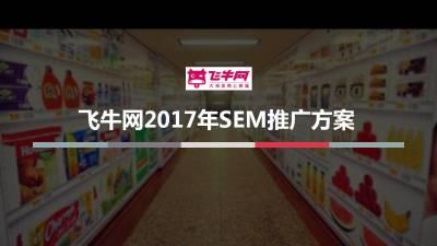 网上商城-飞牛网SEM推广方案