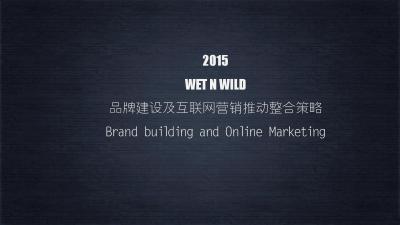 美妆品牌wet n wild品牌建设及互联网营推动整合策略推广方案
