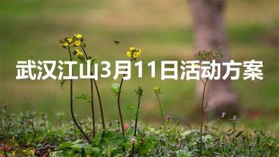 武汉江山桃花美食品鉴会暨大型风筝互动展主题活动策划方案