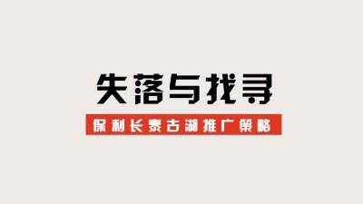 商业地产保利长泰古湖整合推广营销策划方案