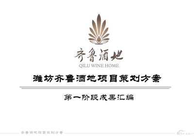 旅游文化传播潍坊齐鲁酒地项目营销策划方案