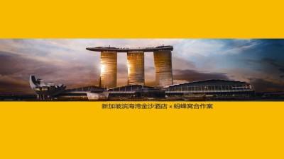 新加坡金沙酒店x马蜂窝合年度合作规划策划方案