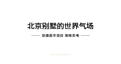 地产行业洋正凯德-北京别墅的世界气场品牌推广方案