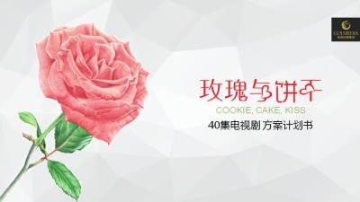 电视剧《玫瑰与饼干》电视剧招商通案计划书方案