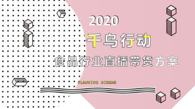 2020食品行业直播带货营销策划方案