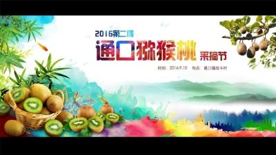 主题文化节第二界通口猕猴桃采摘节活动策划方案