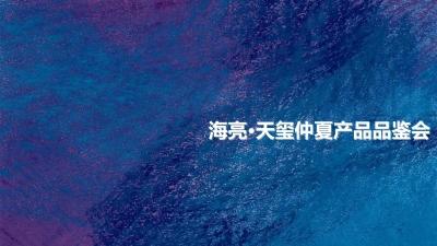 房地产品牌海亮天玺仲夏产品品鉴会活动策划方案