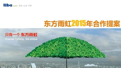 家装涂料品牌东方雨虹年度合作营销策划方案