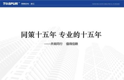房地产品牌同策招商蓝孔雀项目营销策略方案
