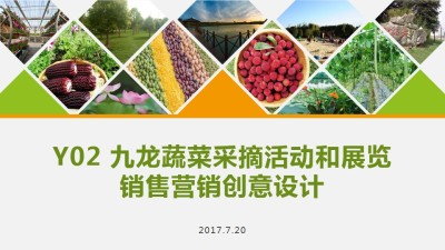 创意农庄农场九龙蔬菜采摘节活动和展览销售创意营销策划方案