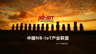 物联网中国NB-IOT产业联盟年度规划营销策划方案