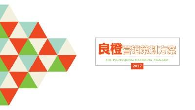 互联网电商APP良橙营销策划宣传推广方案