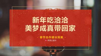 休闲食品洽洽春节与网易云音乐合作建议策划方案[14P]