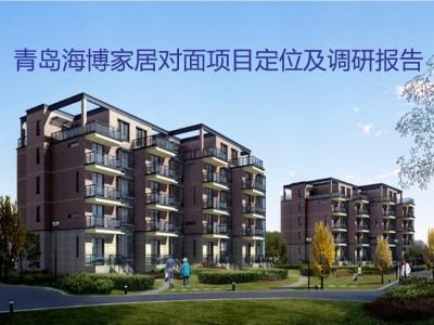 房地产行业青岛海博家居对面项目定位及调研报告策划方案
