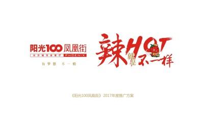 湖南地名《阳光100凤凰街》年度推广营销旅游推介策略方案