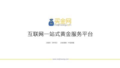 服务平台买金网互联网一站式黄金服务平台融资计划方案