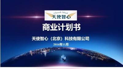 技术开发行业天使智心(北京)科技有限公司项目商业计划书方案