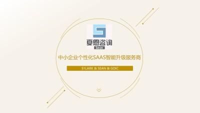 软件产品夏恩咨询中小企业个性化SAAS智能升级服务商推广方案