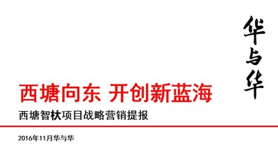 旅游景点—西塘智杕项目战略营销策划方案