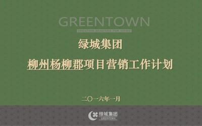 房地产行业绿城集团柳州杨柳郡项目营销工作计划方案+报价单