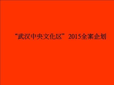 商业地产品牌武汉万达中央文化区全案企划策划全案