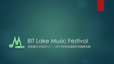 大型文化北湖音乐节招商策划方案