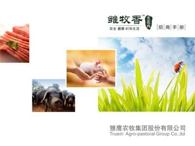 农牧生态雏牧香生态产品招商手册策划方案