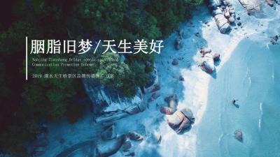 旅游行业溧水天生桥景区品牌传播推广方案[54P]