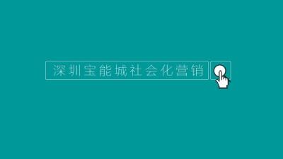 房地产品牌深圳宝能城社会文化营销策划方案