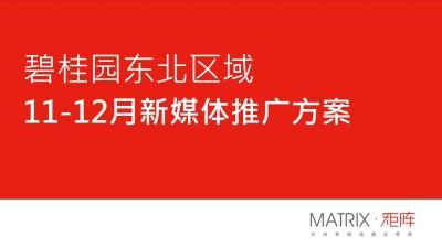 房地产品牌沈阳碧桂园11·12月新媒体营销矩阵互动策划方案